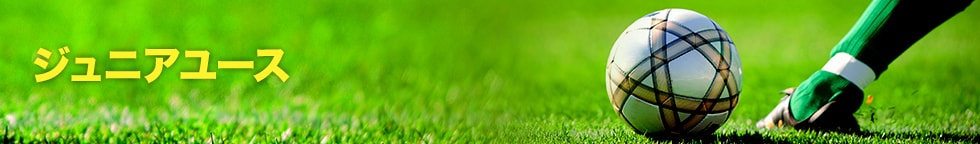 ジュニアユース試合予定・試合結果2015 4月~6月